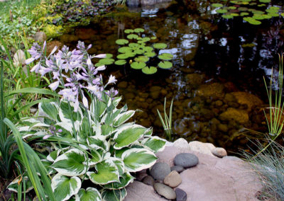 Water_Feature_Pond_6