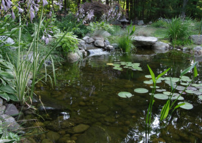 Water_Features_Pond_6